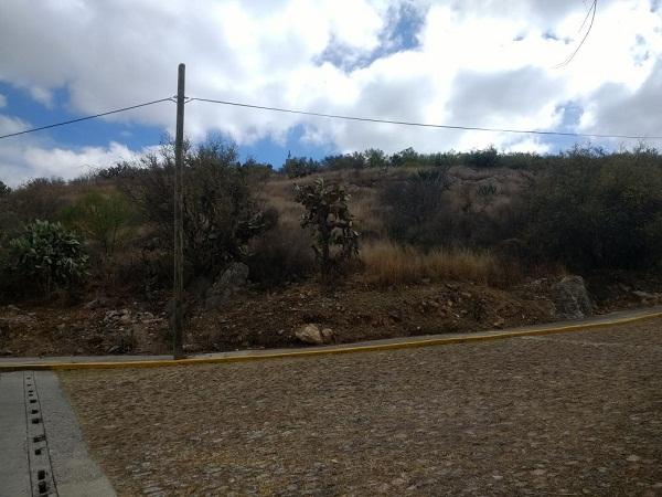 Terreno en venta en Fracc. Los Viñedos en Tequisquiapan en Qro (10)