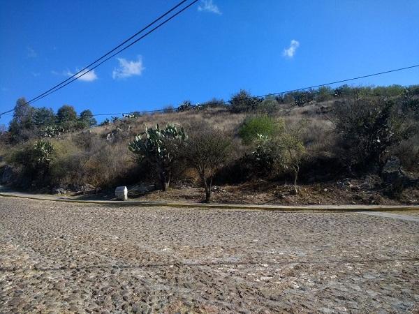 Terreno en venta en Fracc. Los Viñedos en Tequisquiapan en Qro (15)