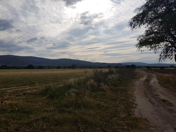 Hectáreas en Venta en Tequisquiapan, Querétaro en Ejido Tequisquiapan (4)