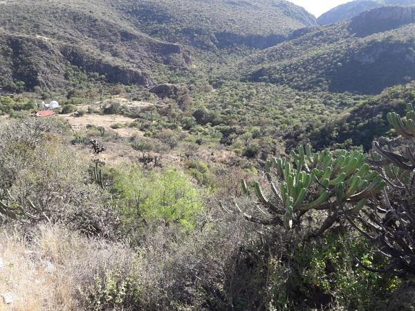 Rancho en Venta EL AGUACATE en Villa Progreso del Municipio de Ezequiel Montes, Querétaro (13)