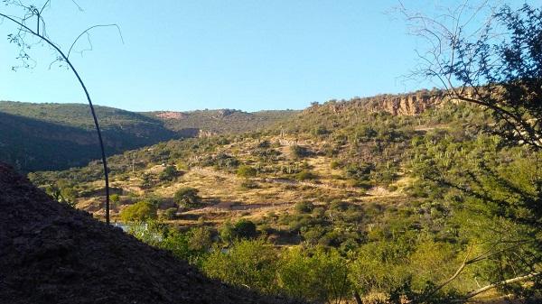 Rancho en Venta EL AGUACATE en Villa Progreso del Municipio de Ezequiel Montes, Querétaro (2)