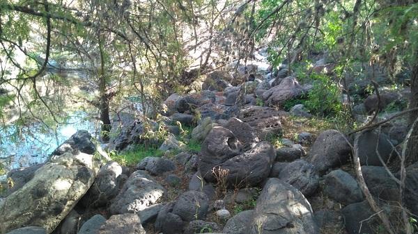 Rancho en Venta EL AGUACATE en Villa Progreso del Municipio de Ezequiel Montes, Querétaro (5)