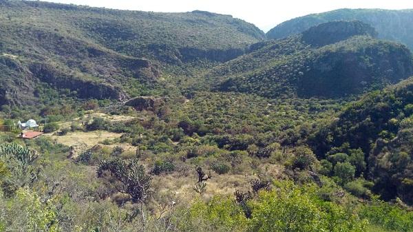 Rancho en Venta EL AGUACATE en Villa Progreso del Municipio de Ezequiel Montes, Querétaro (6)