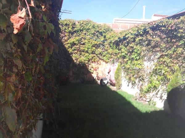 Casa en Venta en Tequisquiapan, Querétaro en Col. Ampliación en Adolfo López Mateos Tx-1742 (13)