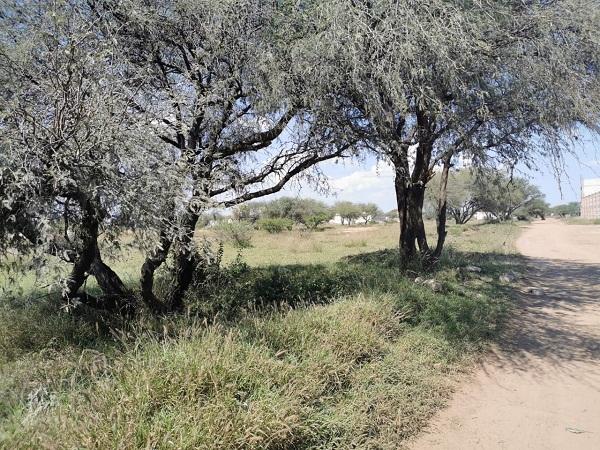 Venta de Terreno en Tequisquiapan, Querétaro en Colonia Charretera Tx-2366 (2)