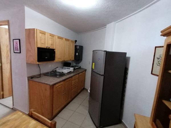 Venta y Renta de bungalows en plaza Santa Lucia en Tequisquiapan Col. Sauz Tx-2371 (6) - copia