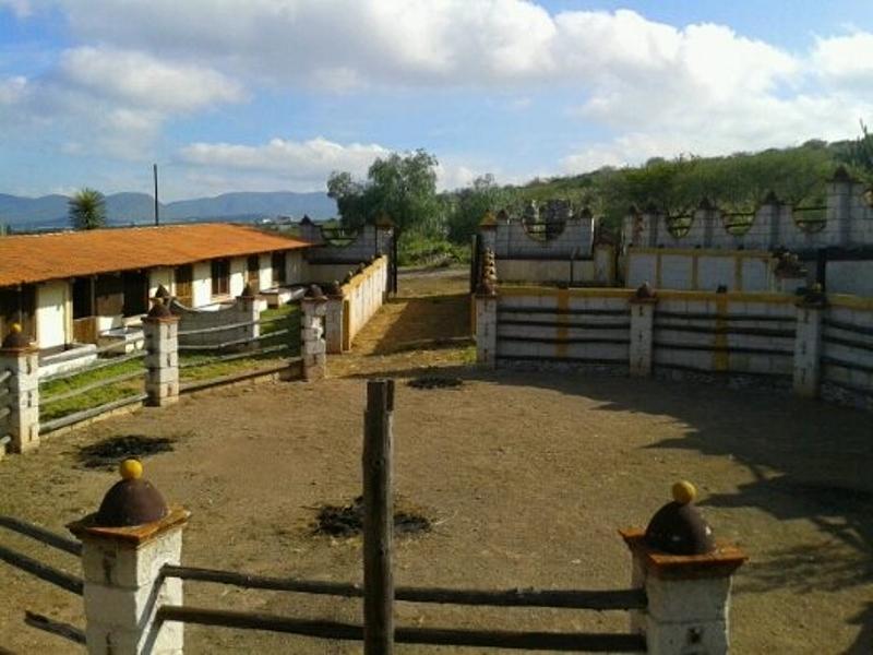 TX-1732 Rancho en Venta, San Pablo Toliman