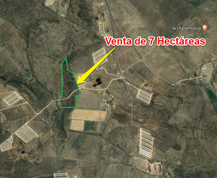Venta de Hectáreas en Tequisquiapan, Querétaro en Col. «LA LAJA Y URECHO» Tx-2311